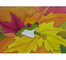 Frog Loves the Fall Photographic Print