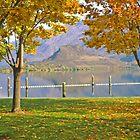 Okanagan Fall 2 by Priscilla Turner