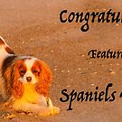 Spaniels Forever Banner by Marilyn Cornwell