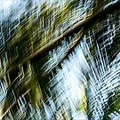 Swan songs #06 by LouD