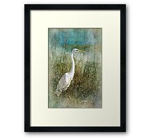 Dreaming in the Grass Framed Print