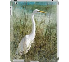 Dreaming in the Grass iPad Case/Skin