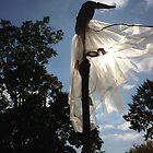 Ghost Solar Power by Arlene Zapata