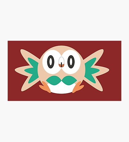 Rowlet Photographic Print