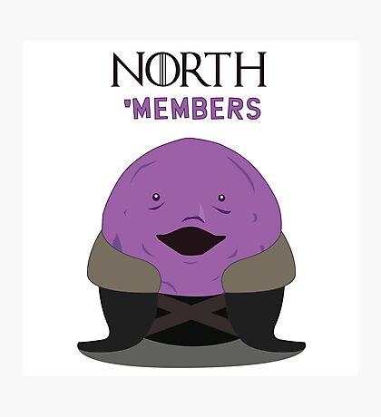 North members Photographic Print