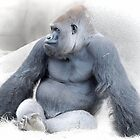 The Pensive Primate by Dyle Warren
