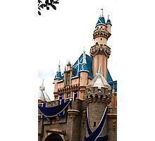 Castle Contrast Photographic Print