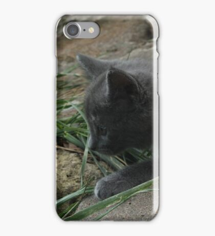 Stalking the Grass iPhone Case/Skin