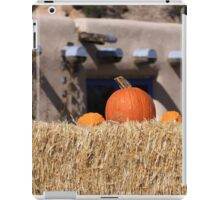 Southwest Autumn  iPad Case/Skin