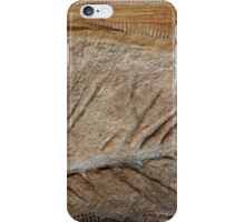 Fossil XII iPhone Case/Skin