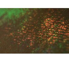 layers of color - three Photographic Print