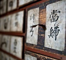 """Traditional Korean herbal medicine chest with """"Chinese Angelica"""" on the drawer by koreanrooftop"""