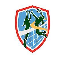 Volleyball Player Spiking Ball Blocking Shield by patrimonio