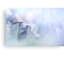 Between the showers Canvas Print