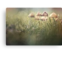 Getting wet in a row Canvas Print