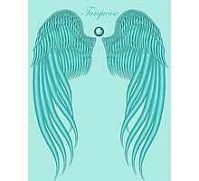 Turquoise wings Photographic Print