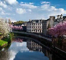 Paisley in Spring! by Karen Brodie