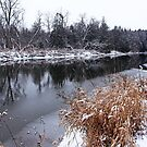 Touch Of Winter by Debbie Oppermann