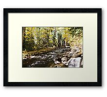 Fall JZ7A7398 V2 Framed Print
