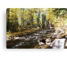 Fall JZ7A7398 V2 Canvas Print