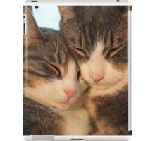 Sibling Love iPad Case/Skin