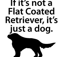 If It's Not A Flat Coated Retriever by kwg2200