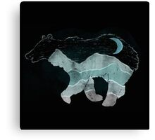 Ursa major... Canvas Print