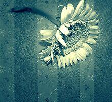 Flower by ACappellari