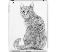 Beautiful Illustrated Cat Drawing iPad Case/Skin