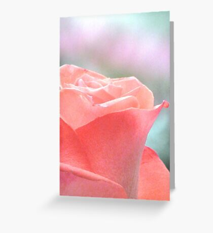 Don't Forget To Smell The Roses Greeting Card