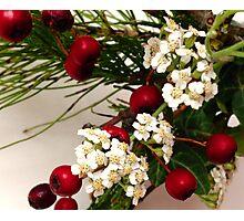 Berry Beautiful Photographic Print
