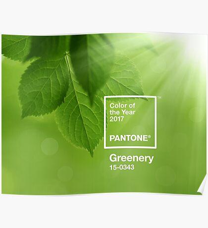 pantone greenery Poster
