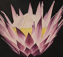 King Protea by Jan Vinclair