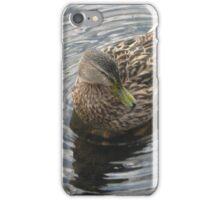 Sitting Duck iPhone Case/Skin