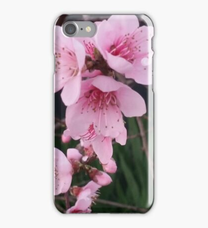 Pink blossoms - Spring iPhone Case/Skin