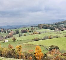 Autum In The Country by denise romano