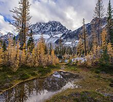 Stuart Range and Fall Colors by mikereid