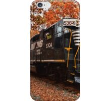 Fall at it's finest iPhone Case/Skin