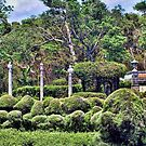 Portion of the Garden at Vizcaya by GolemAura