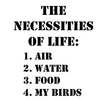The Necessities Of Life: My Birds - Black Text by cmmei