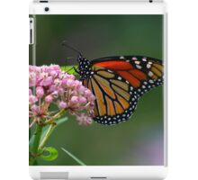 Late September Stunning Monarch iPad Case/Skin