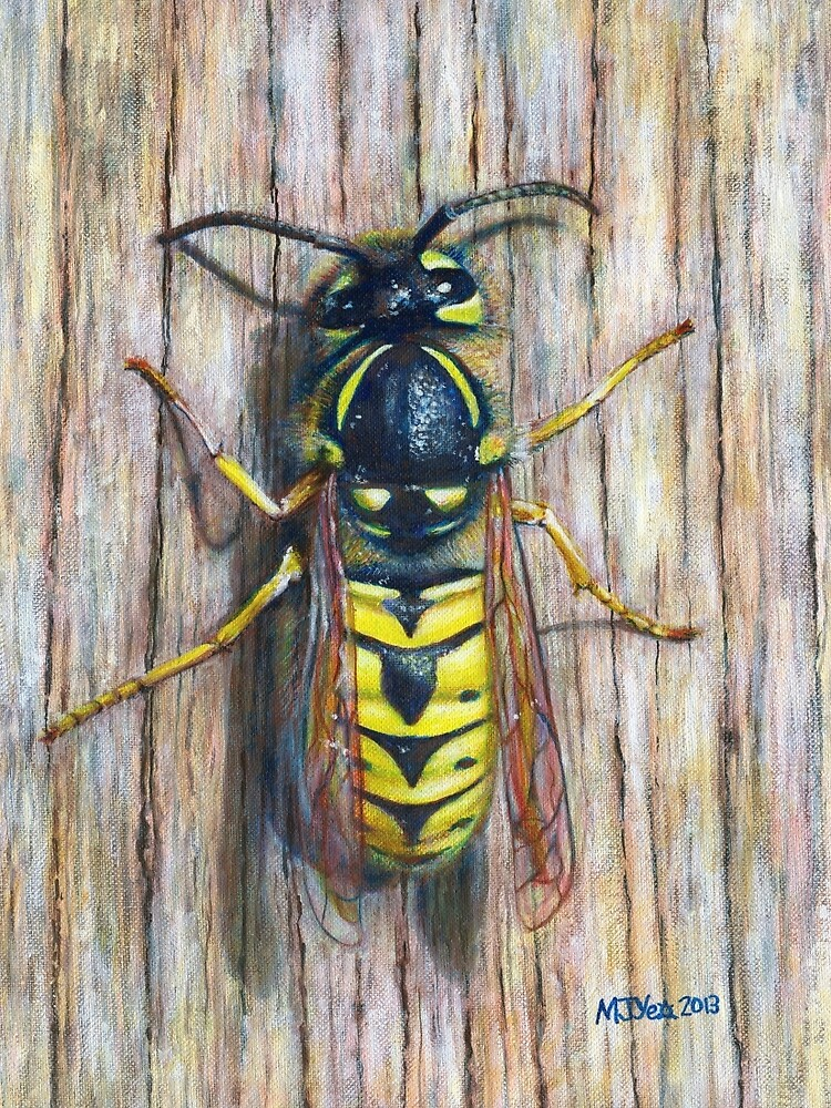Acrylic painting, Wasp nature art by Marion Yeo