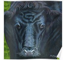 Acrylic painting, Cow's face animal art Poster