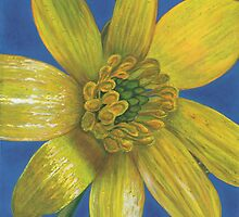 A simple celendine by Marion Yeo
