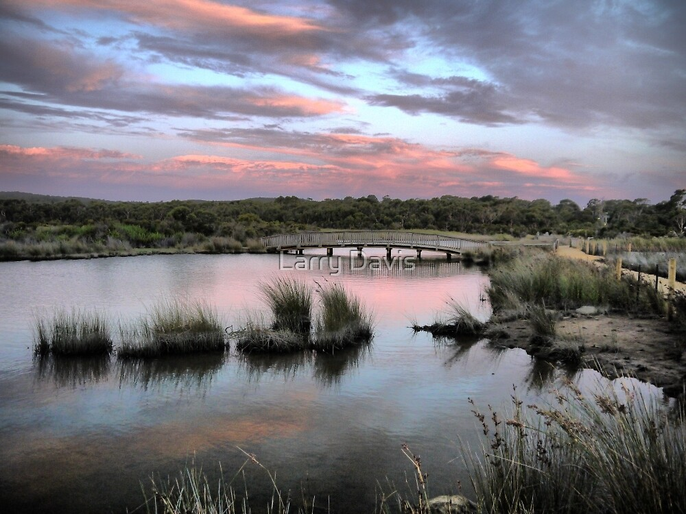 The Torquay Wetlands (6) by Larry Lingard-Davis