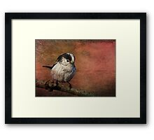 Bird on the Beam Framed Print