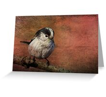 Bird on the Beam Greeting Card