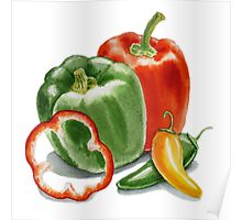 Bell Peppers And Jalapeno  Poster