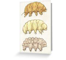 Waterbears Greeting Card