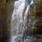 Fuller Falls by Martha Medford